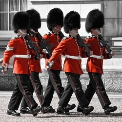 Royal Navy Sailors to perform Changing the Guard